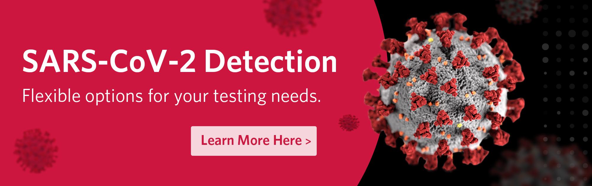SARS-CoV-2 Detection