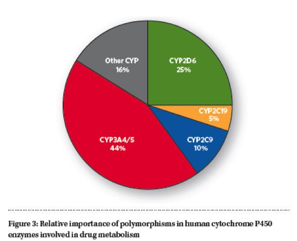 cyp 450 chart