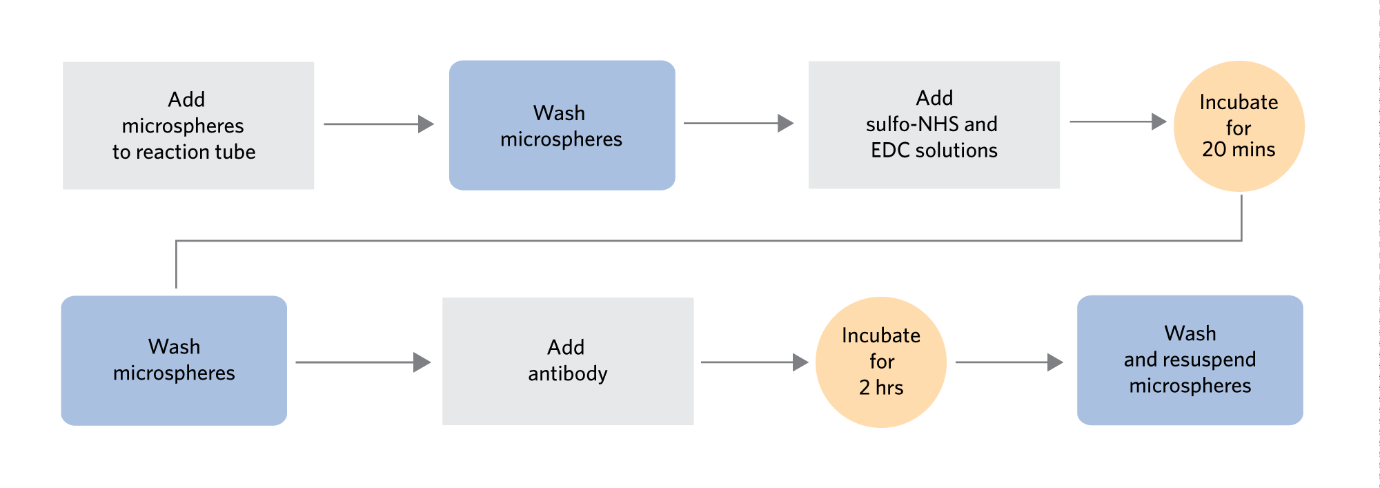 xMAP Antibody Coupling Kit Workflow Overview for use with MagPlex Microspheres