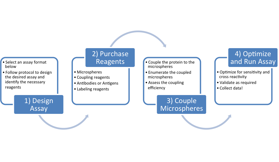 Key steps in the assay development process