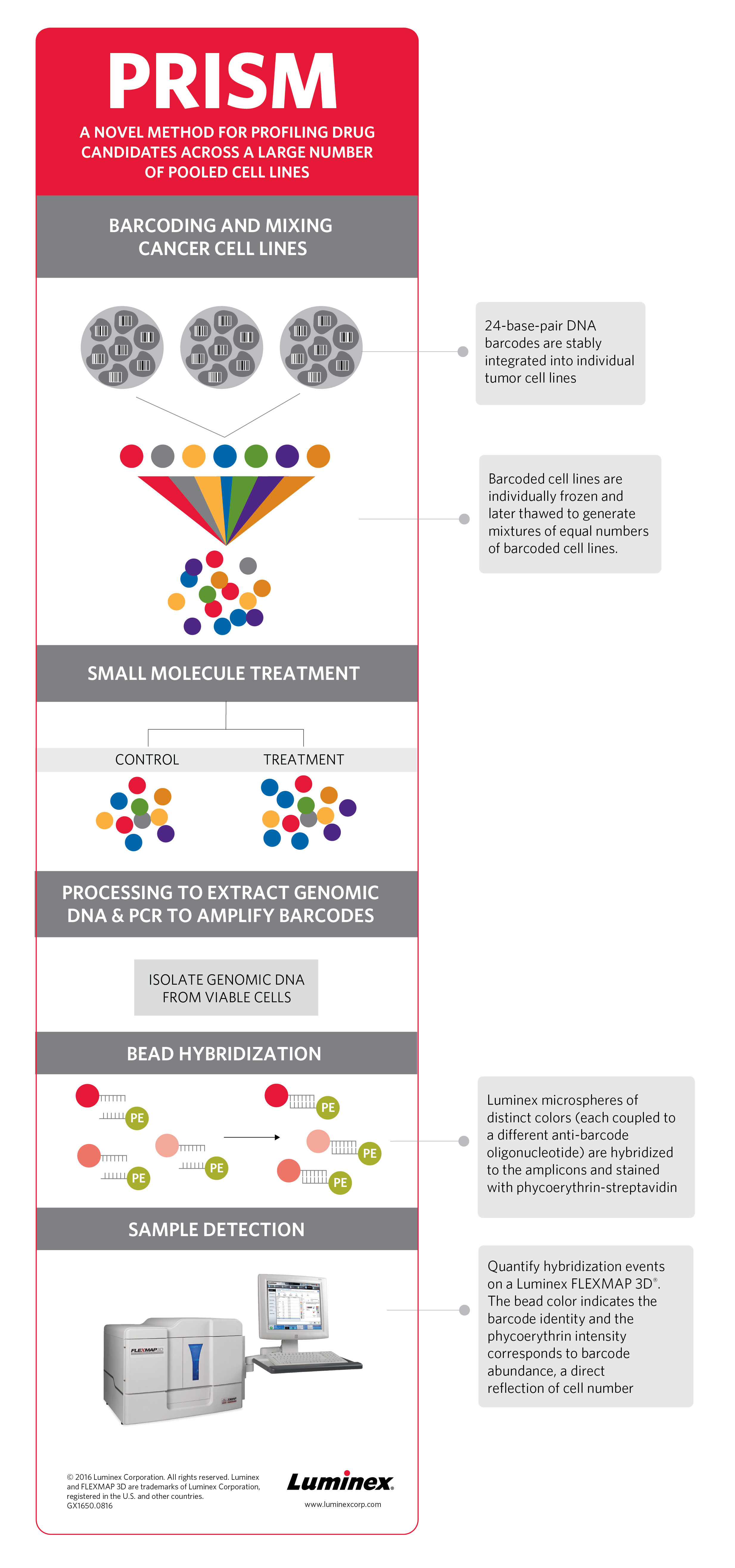 PRISM: A Novel Bead-Based Biological Barcode Assay Infographic - A Novel Method for Profiling Drug Candidates Across Large Number of Pooled Cell Lines
