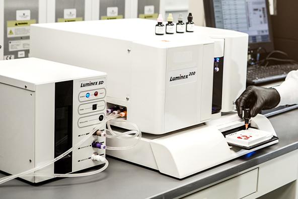 Multiplexing Provides Richer Information for Veterinary Testing